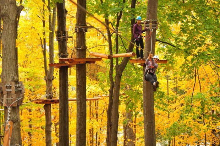 Treetop Trekking Stouffville Park